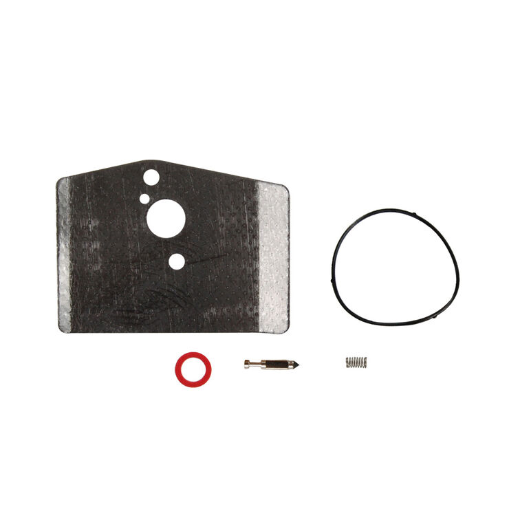 Carburetor Kit (Minor)