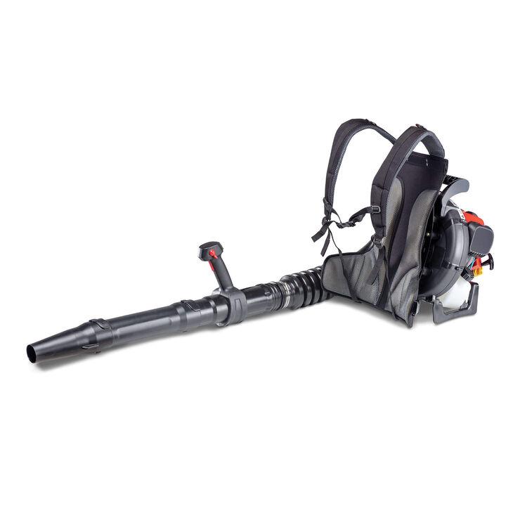 TB4BP EC Backpack Gas Leaf Blower