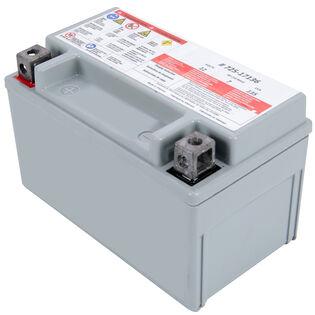 AGM Battery
